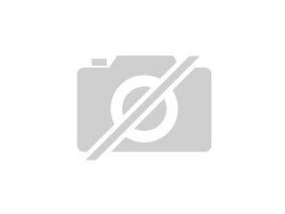 Gartenmobel Holz Oder Polyrattan : kleine kätzchen zu verschenken willhaben